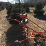 Planting April 2015